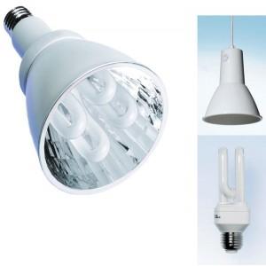 Kit : lampe de croissance + armature