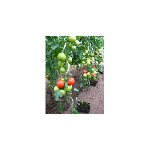 Tuteur tomate castorama simple amazing cloison amovible translucide rennes cloison amovible - Tuteur tomate bois ...